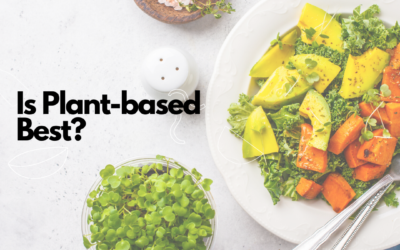 Is Plant-Based Best?